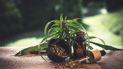 cannabis-hennep-olie