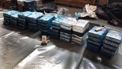 Cocaïne tussen de bananen aangetroffen bij bedrijf in Westland