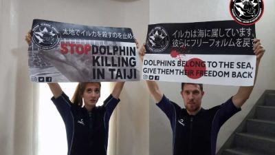 Nederlandse en Belgische dolfijnenvrienden vrijgelaten uit Japanse gevangenis