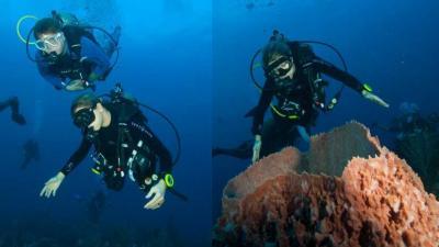 Willem-Alexander en Máxima duiken op Saba naar koraalrif