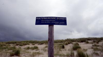 Duinen Waddeneilanden beschadigd door storm