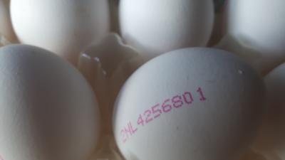 NVWA maakt nieuwe lijst met besmette eieren bekend