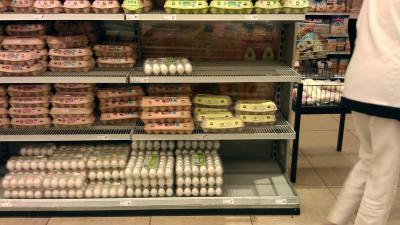 Onderzoeksraad start onderzoek naar fipronil in voedselketen