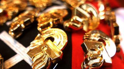 embleem-politie-goud