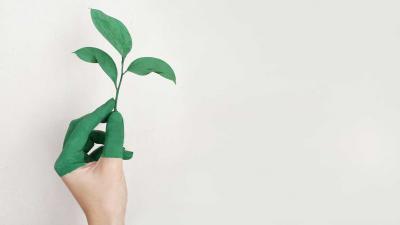 groen-milieu-duurzaam