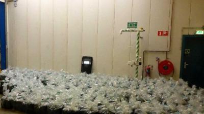 HARC vindt 2500 kilo hennep in container met houtskool