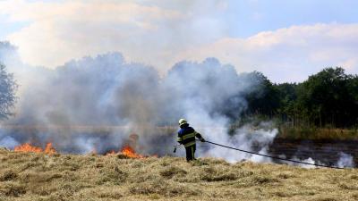 Flinke natuurbrand in weiland nabij Hooibrug is vierde in korte tijd