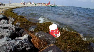 Amsterdam gaat eiland in IJmeer bouwen voor 3000 woningen