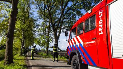Afgebroken tak bungelt gevaarlijk boven de weg in Boxtel