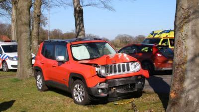 De onfortuinlijke bestuurder moest uitwijken voor een tegenligger en kwam daarbij in de berm terecht. Vervolgens verloor de automobilist de macht over het stuur en knalde vol op een boom.  Niemand raakte gewond. De auto, die met de voorkant vol op de boom