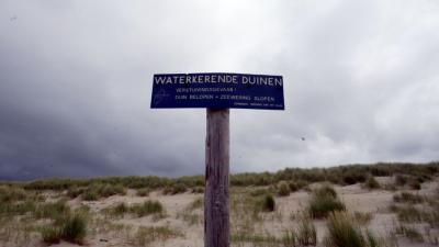 foto van duinen | fbf