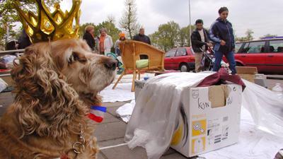 Foto van hond met kroon op vrijmarkt koninginnedag   Archief EHF