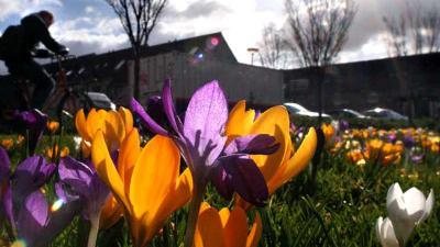 Kwik tikt in de Bilt voor eerste keer dit jaar de 20 graden aan