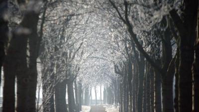 Het Groninger Landschap verwerft 105 ha in het Zuidlaardermeergebied