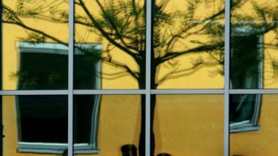Foto van leerlingen op schoolplein raam spiegeling | Archief EHF