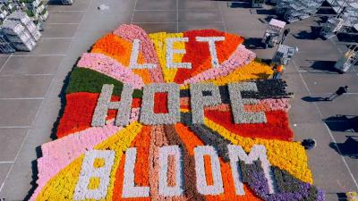 let-hope-bloom