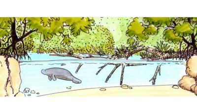 Grootste overdekte mangrove ter wereld komt in Arnhem