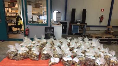 Douane vindt 700 kilo marihuana in blikjes levensmiddelen