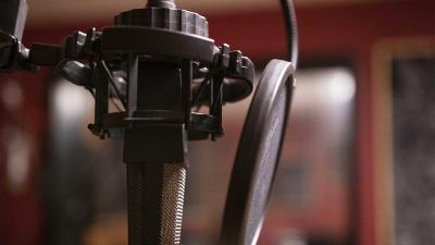 microfoon-stem
