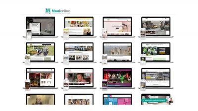 mooionline-webshops-websites