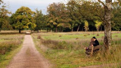 Natuurbegraafplaats | Natuurmonumenten