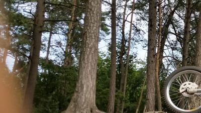 Man lokt kinderen met snoepje en pleegt schennis in bos van Nunspeet