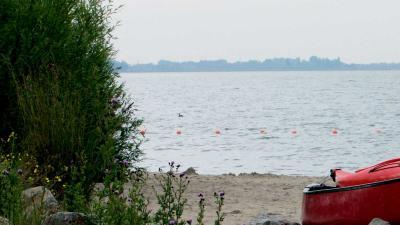 Verdwenen schipper (39) dood gevonden aan oever Nieuwe Meer