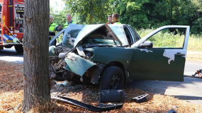 Auto total loss na aanrijding met boom