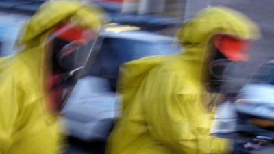 De Nederlandse gewone steekmug kan virus overbrengen