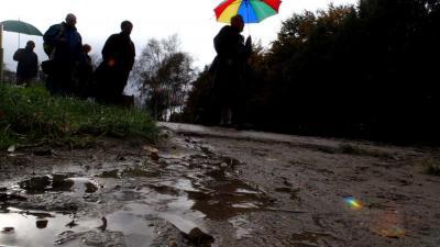 Foto van paraplu regen bos | Archief EHF