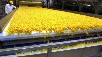 Meeste patat komt uit Nederland en België