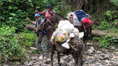 foto van natuurgebied Peru