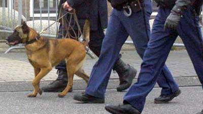 Foto van politie en hond | Archief EHF