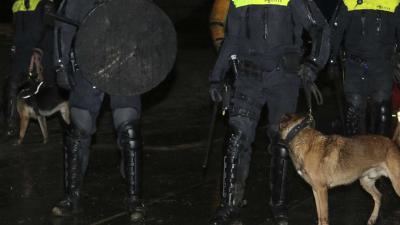 politie-honden-donker