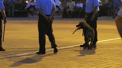 Foto van politie met wapenstok en hond | Archief EHF