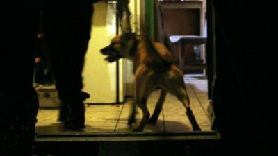 Foto van politiehond | Archief FBF.nl