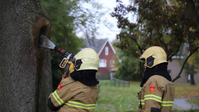 Brandweer blust boom
