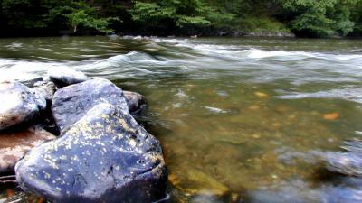 rivier-stroming-zwemmen