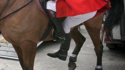 ruiter-paard