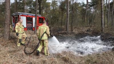 Brandweer dooft brand in bosgebied in Oirschot