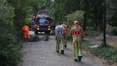 Afgebroken boomtak blokkeer Huygensstraat in Son en Breugel