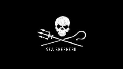 foto van Sea Shepherd