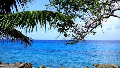 Foto van tropischeiland | Sxc