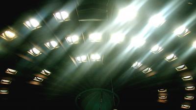 Foto van raampjes in dak Dolfinarium | Archief EHF