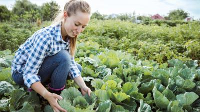 Duurzaam voedsel verbouwen