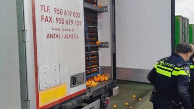 Verstekelingen aangetroffen tussen lading sinassapels in vrachtwagen Ridderkerk