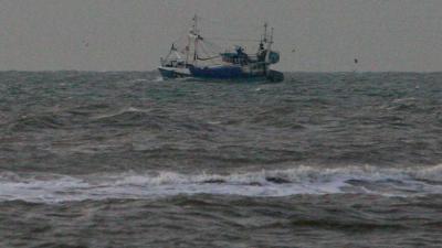 vis-kotter-boot-zee