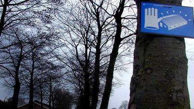 Vastgestelde vogelgriep Stolwijk betreft besmettelijke H5N8-variant