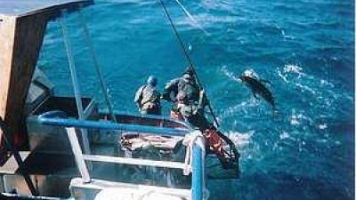 Foto van illegale visserij | WNF