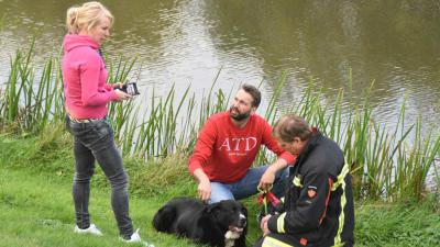 Brandweer redt dieren uit woning vol rook